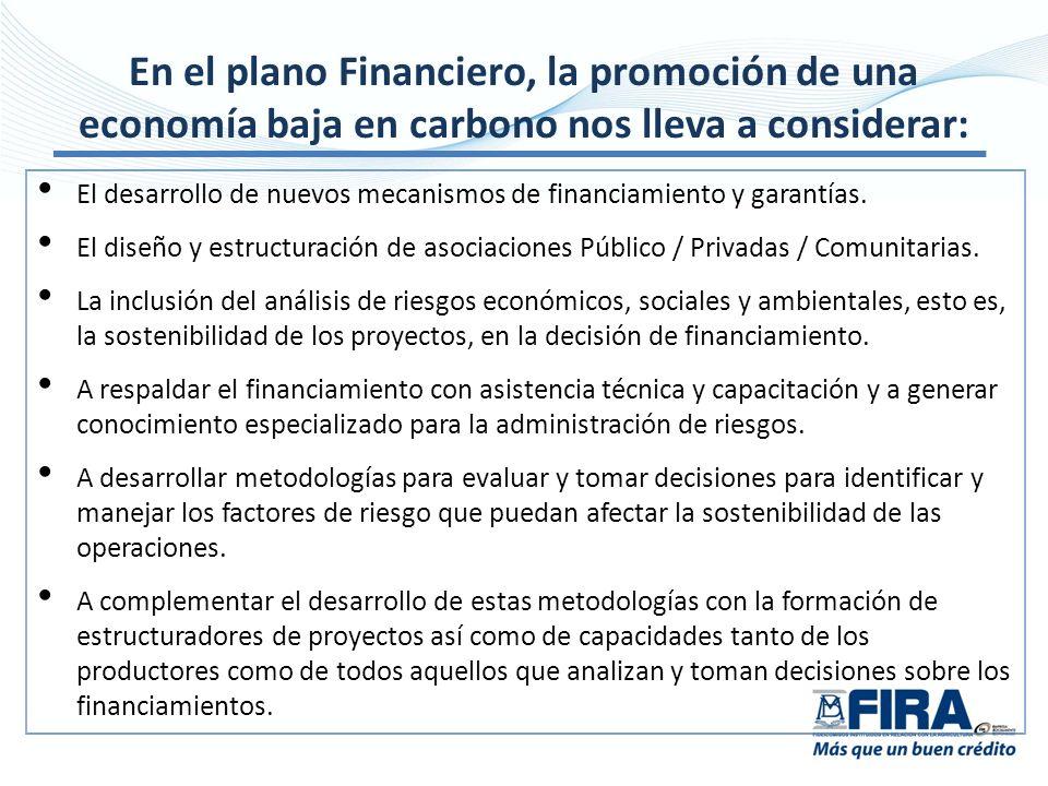 El desarrollo de nuevos mecanismos de financiamiento y garantías. El diseño y estructuración de asociaciones Público / Privadas / Comunitarias. La inc