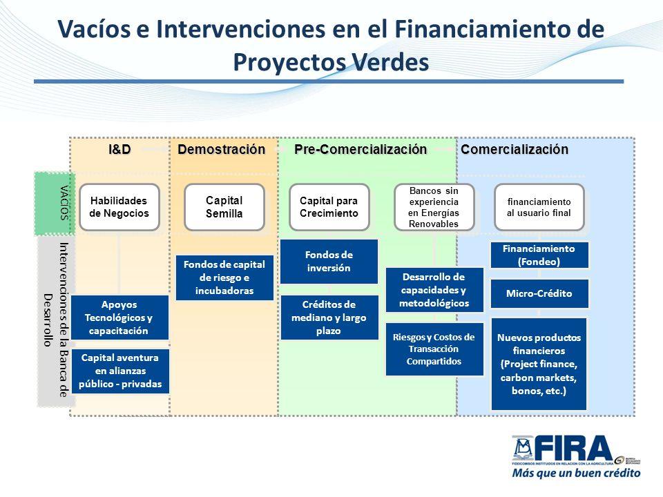 I&DPre-ComercializaciónComercialización Intervenciones de la Banca de Desarrollo VACÍOS Demostración financiamiento al usuario final Habilidades de Ne