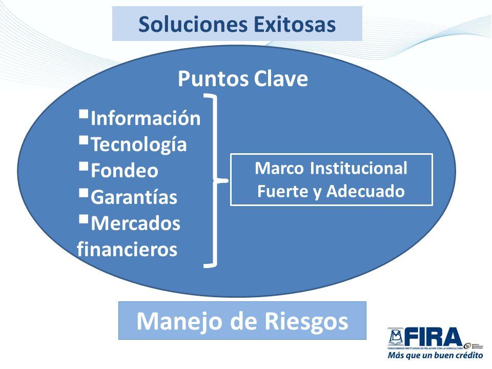 Puntos Clave Información Tecnología Fondeo Garantías Mercados financieros Soluciones Exitosas Marco Institucional Fuerte y Adecuado Manejo de Riesgos