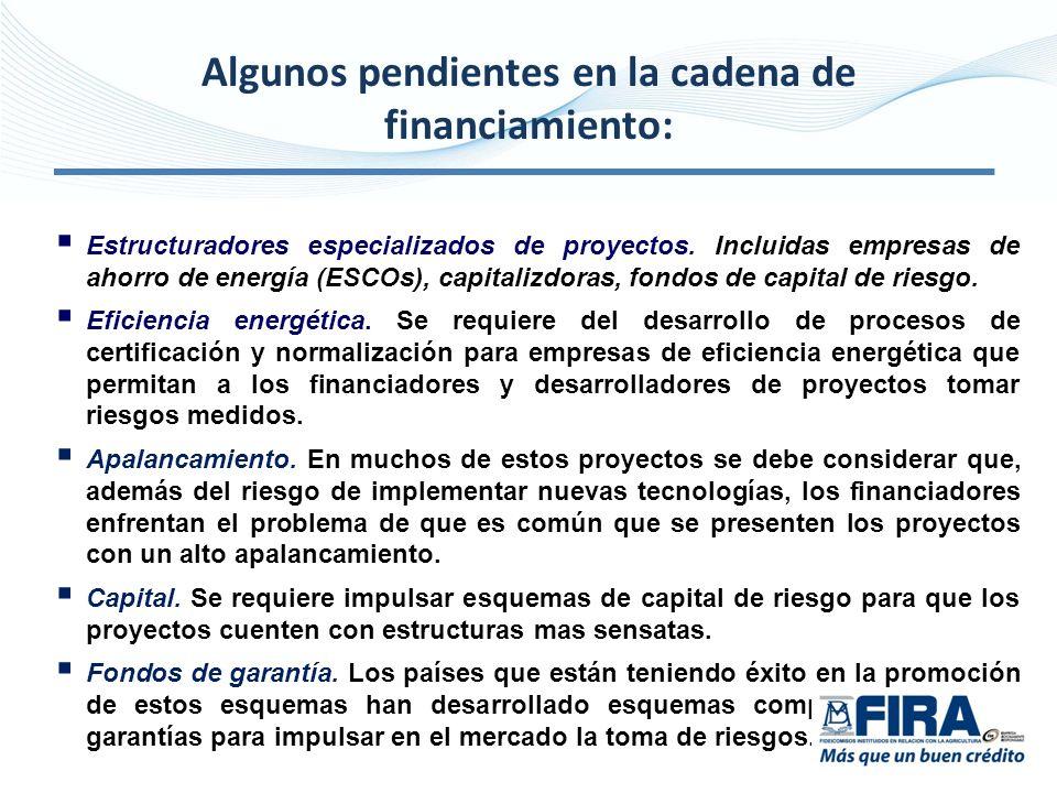 Estructuradores especializados de proyectos. Incluidas empresas de ahorro de energía (ESCOs), capitalizdoras, fondos de capital de riesgo. Eficiencia
