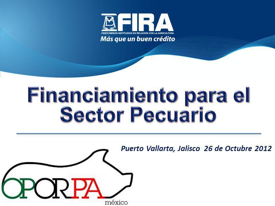 Información GeneralLimitantes en el Sector y AlternativasProgramas de Apoyo a la PorciculturaParticipación de FIRA en el FinanciamientoEsquemas de Desarrollo Congreso Nacional de Productores Porcícolas