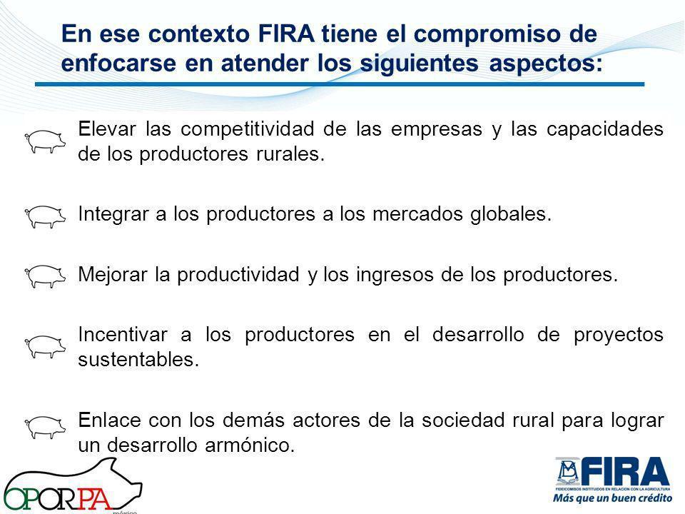 Elevar las competitividad de las empresas y las capacidades de los productores rurales. Integrar a los productores a los mercados globales. Mejorar la