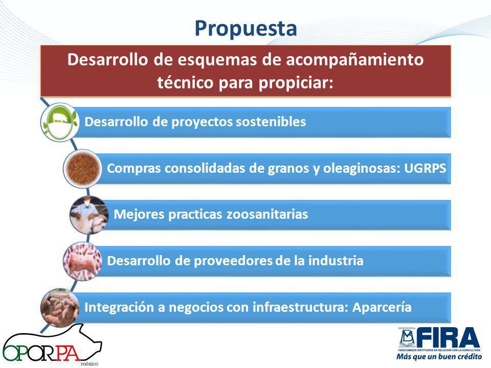 Propuesta Desarrollo de esquemas de acompañamiento técnico para propiciar: Desarrollo de proyectos sostenibles Compras consolidadas de granos y oleagi