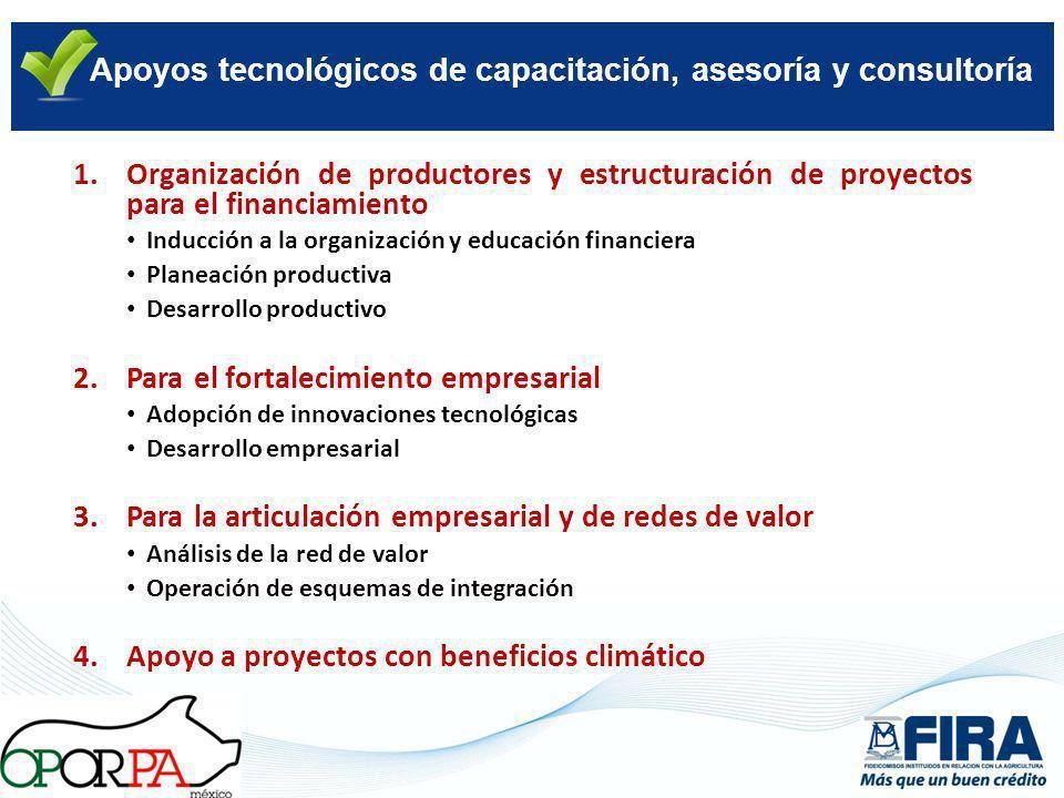 Apoyos tecnológicos de capacitación, asesoría y consultoría 1.Organización de productores y estructuración de proyectos para el financiamiento Inducci