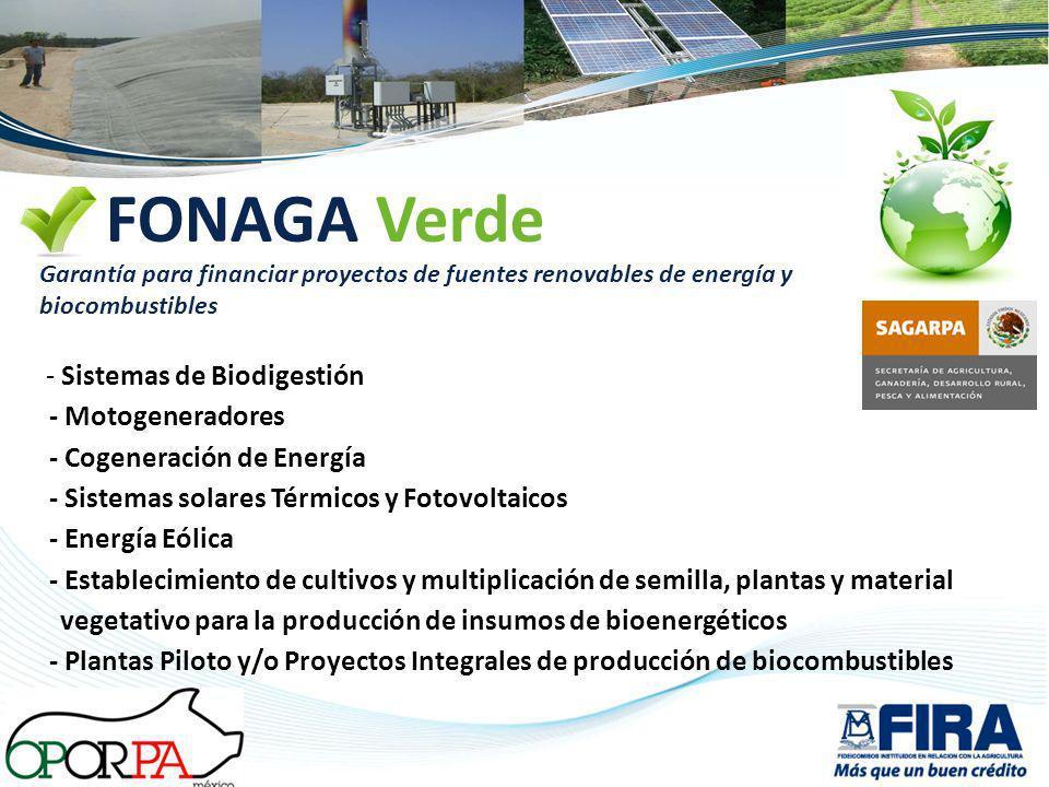 FONAGA Verde Garantía para financiar proyectos de fuentes renovables de energía y biocombustibles - Sistemas de Biodigestión - Motogeneradores - Cogen