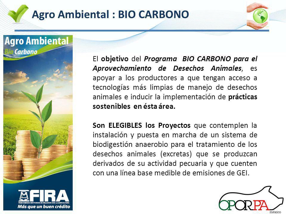 El cambio climát ico es uno de los Agro Ambiental : BIO CARBONO El objetivo del Programa BIO CARBONO para el Aprovechamiento de Desechos Animales, es
