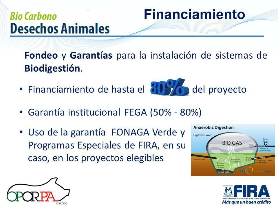 Fondeo y Garantías para la instalación de sistemas de Biodigestión. Fi Financiamiento Financiamiento de hasta el del proyecto Garantía institucional F
