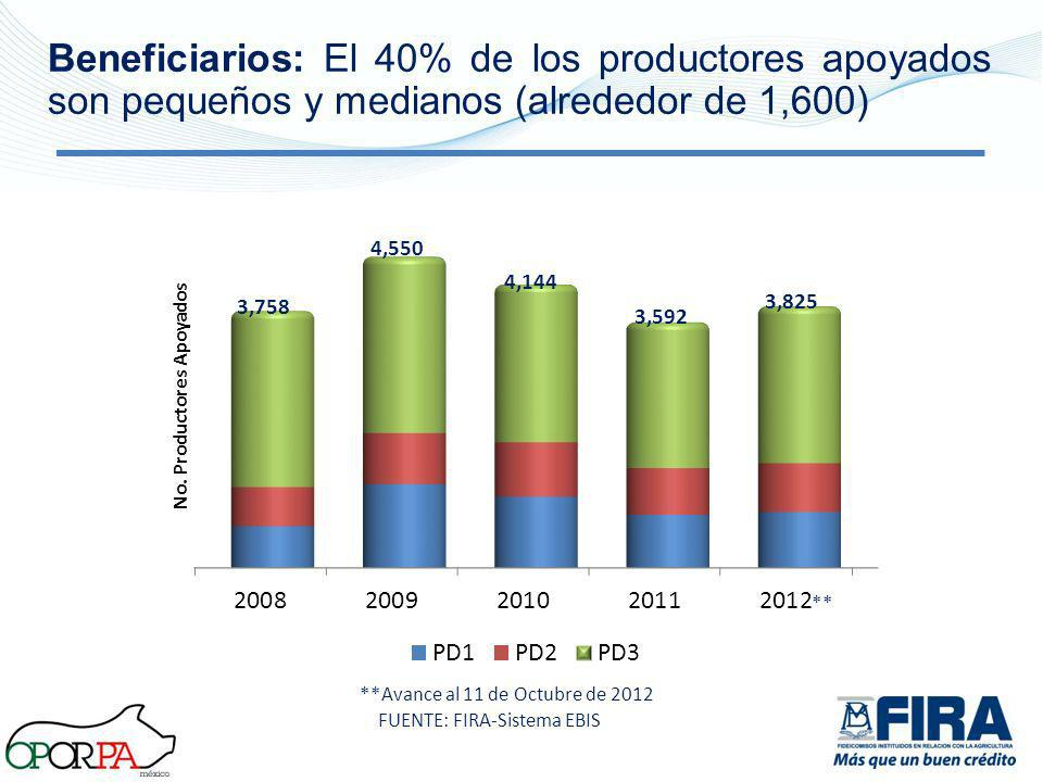 3,758 4,550 4,144 3,592 3,825 **Avance al 11 de Octubre de 2012 ** Beneficiarios: El 40% de los productores apoyados son pequeños y medianos (alrededo