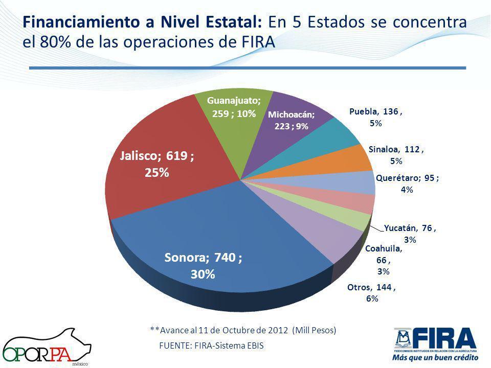 **Avance al 11 de Octubre de 2012 (Mill Pesos) Financiamiento a Nivel Estatal: En 5 Estados se concentra el 80% de las operaciones de FIRA FUENTE: FIR
