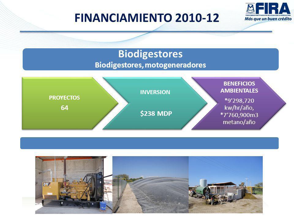 Biodigestores Biodigestores, motogeneradores FINANCIAMIENTO 2010-12