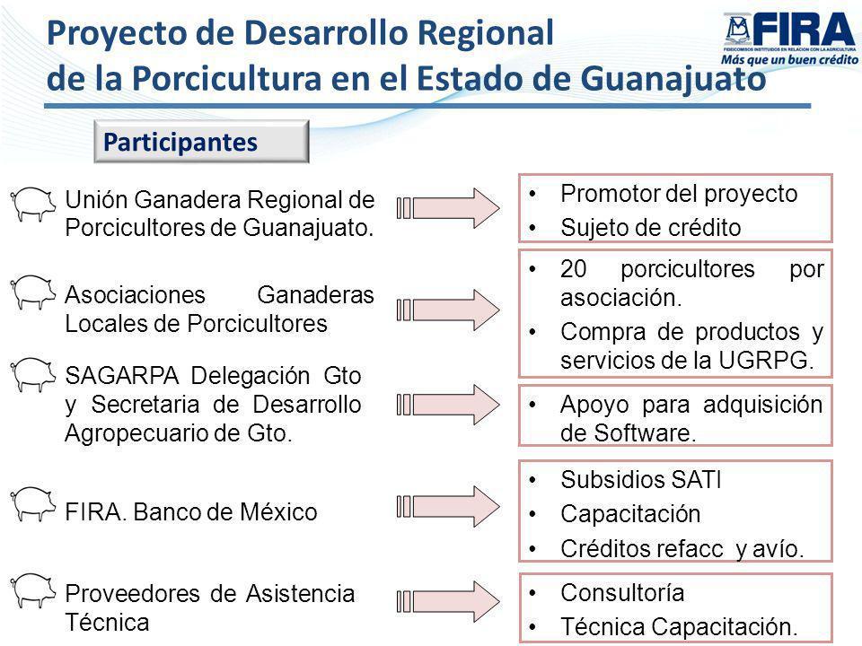 Proyecto de Desarrollo Regional de la Porcicultura en el Estado de Guanajuato Promotor del proyecto Sujeto de crédito 20 porcicultores por asociación.