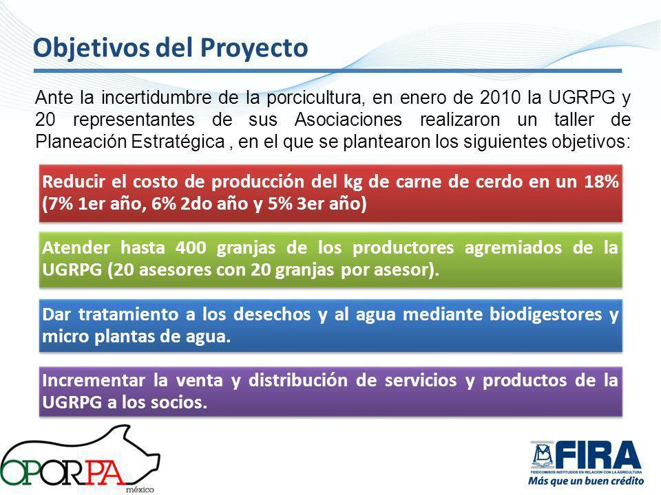 Objetivos del Proyecto Reducir el costo de producción del kg de carne de cerdo en un 18% (7% 1er año, 6% 2do año y 5% 3er año) Atender hasta 400 granj