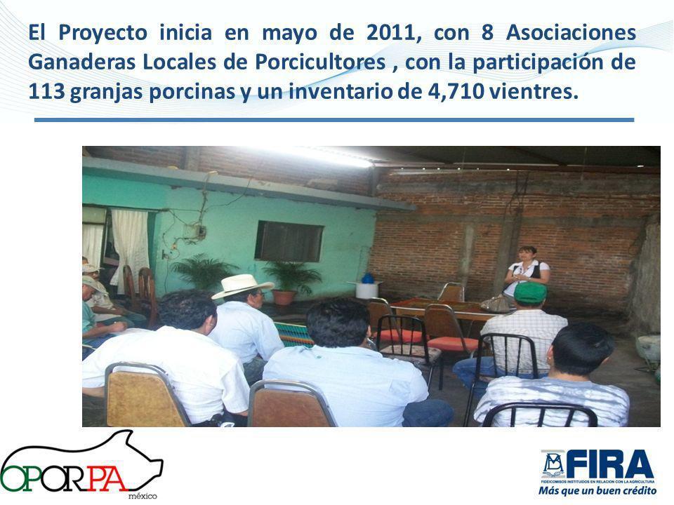 El Proyecto inicia en mayo de 2011, con 8 Asociaciones Ganaderas Locales de Porcicultores, con la participación de 113 granjas porcinas y un inventari