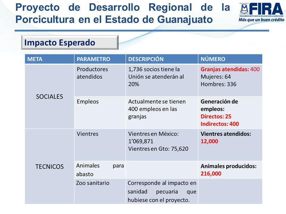 Proyecto de Desarrollo Regional de la Porcicultura en el Estado de Guanajuato Impacto Esperado