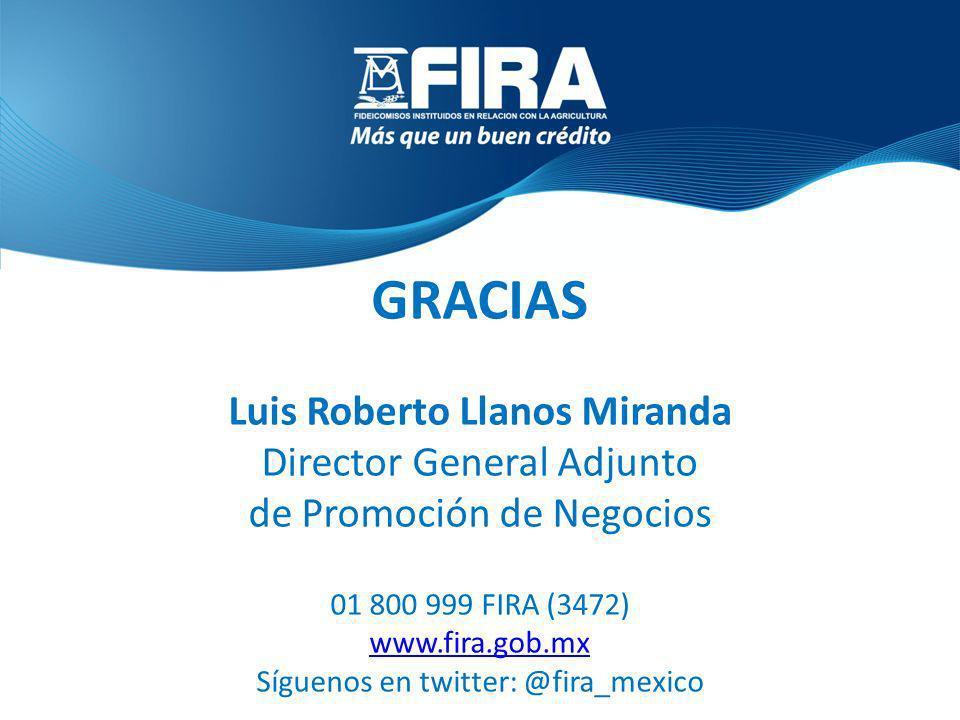 GRACIAS Luis Roberto Llanos Miranda Director General Adjunto de Promoción de Negocios 01 800 999 FIRA (3472) www.fira.gob.mx Síguenos en twitter: @fir