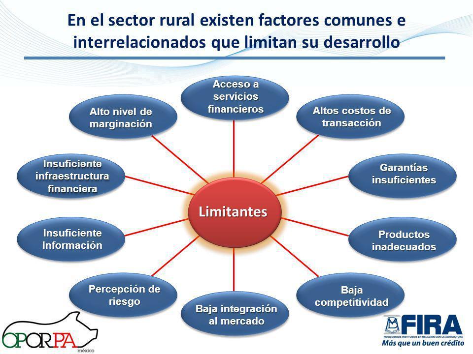 En el sector rural existen factores comunes e interrelacionados que limitan su desarrollo Limitantes Acceso a servicios financieros Altos costos de tr