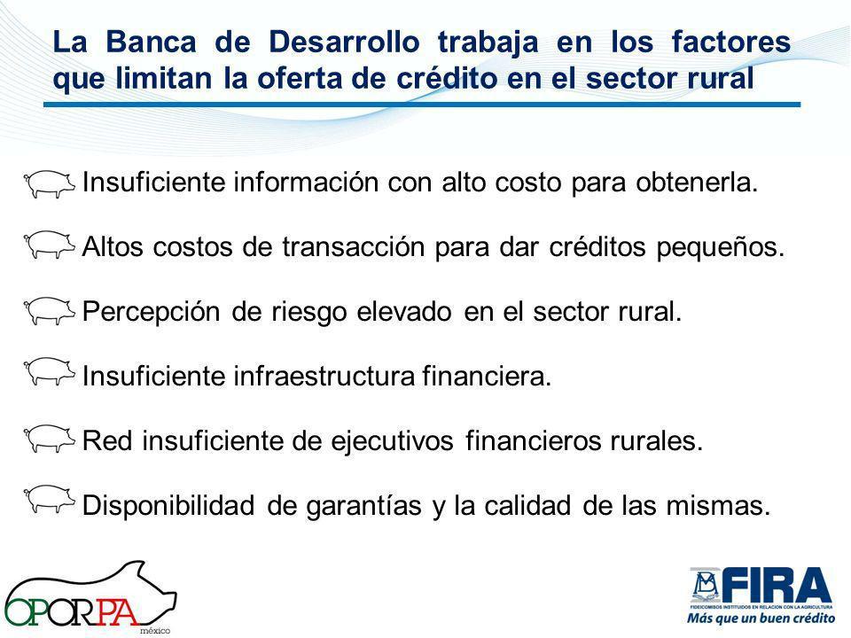 La Banca de Desarrollo trabaja en los factores que limitan la oferta de crédito en el sector rural Insuficiente información con alto costo para obtene