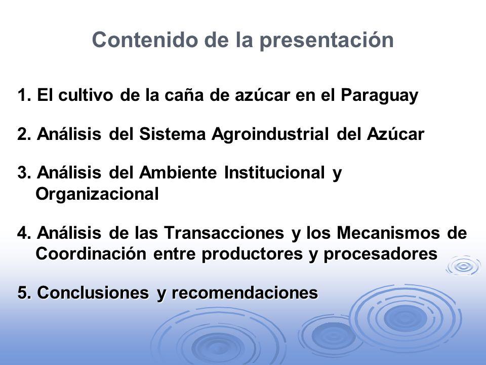 Recomendaciones (cont.) El sector público debe desempeñar un rol activo en la generación de tecnología y en la asistencia a los productores familiares, tanto para mejorar aspectos tecnológicos de su producción como para estimular y facilitar su organización.