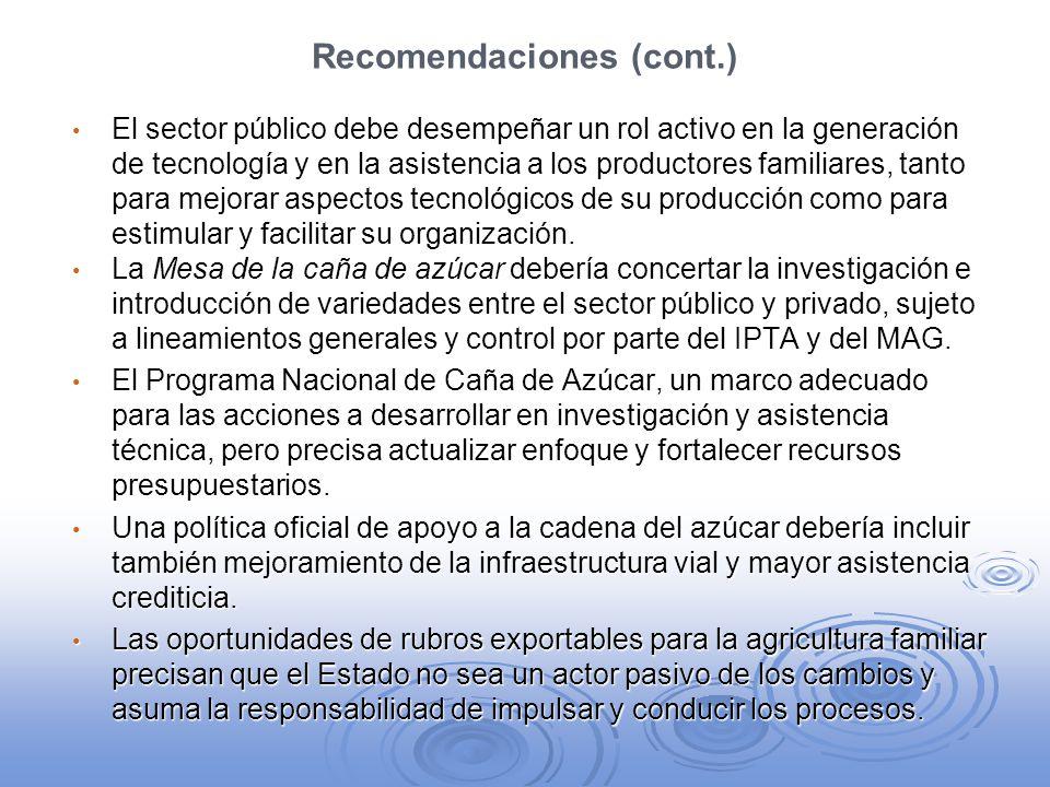 Recomendaciones (cont.) El sector público debe desempeñar un rol activo en la generación de tecnología y en la asistencia a los productores familiares