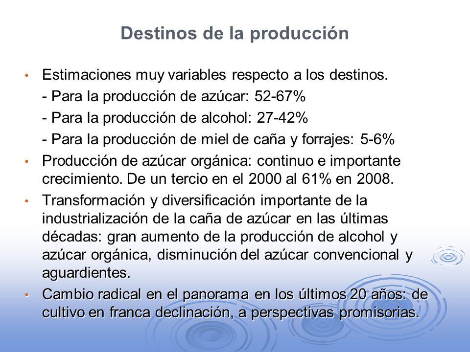 Destinos de la producción Estimaciones muy variables respecto a los destinos. Estimaciones muy variables respecto a los destinos. - Para la producción