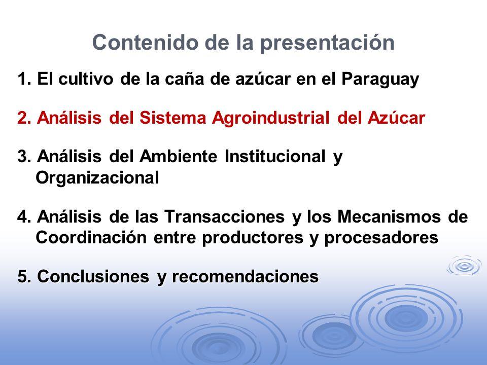 B.Caña orgánica: modelos emergentes de gobernanza i.