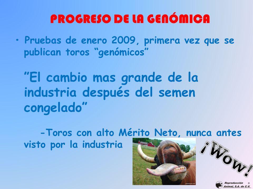 Pruebas de enero 2009, primera vez que se publican toros genómicos El cambio mas grande de la industria después del semen congelado -Toros con alto Mé