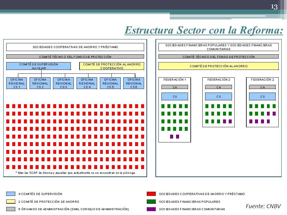 Fuente: CNBV Estructura Sector con la Reforma: 13