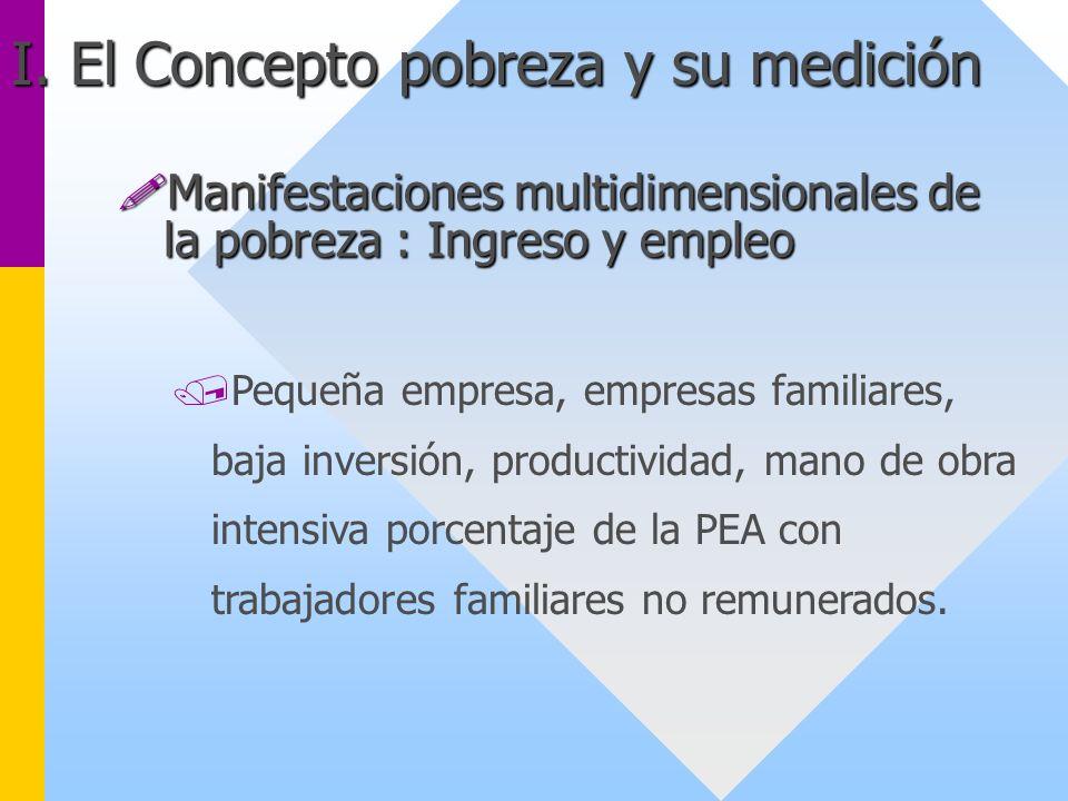/Pequeña empresa, empresas familiares, baja inversión, productividad, mano de obra intensiva porcentaje de la PEA con trabajadores familiares no remun