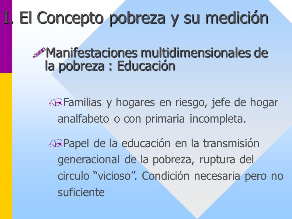 /Familias y hogares en riesgo, jefe de hogar analfabeto o con primaria incompleta. /Papel de la educación en la transmisión generacional de la pobreza