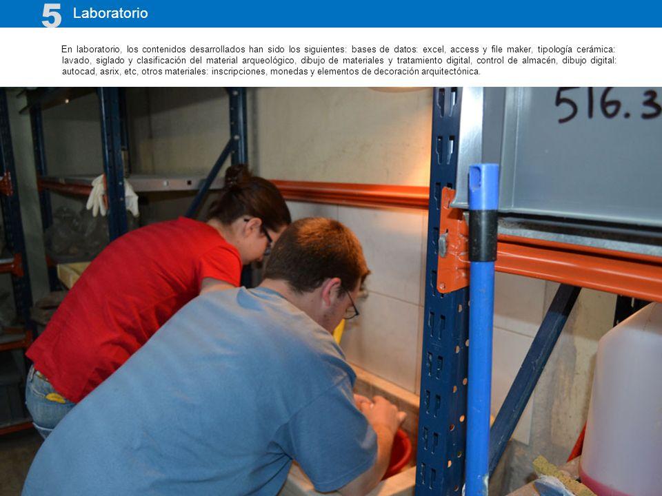 En laboratorio, los contenidos desarrollados han sido los siguientes: bases de datos: excel, access y file maker, tipología cerámica: lavado, siglado