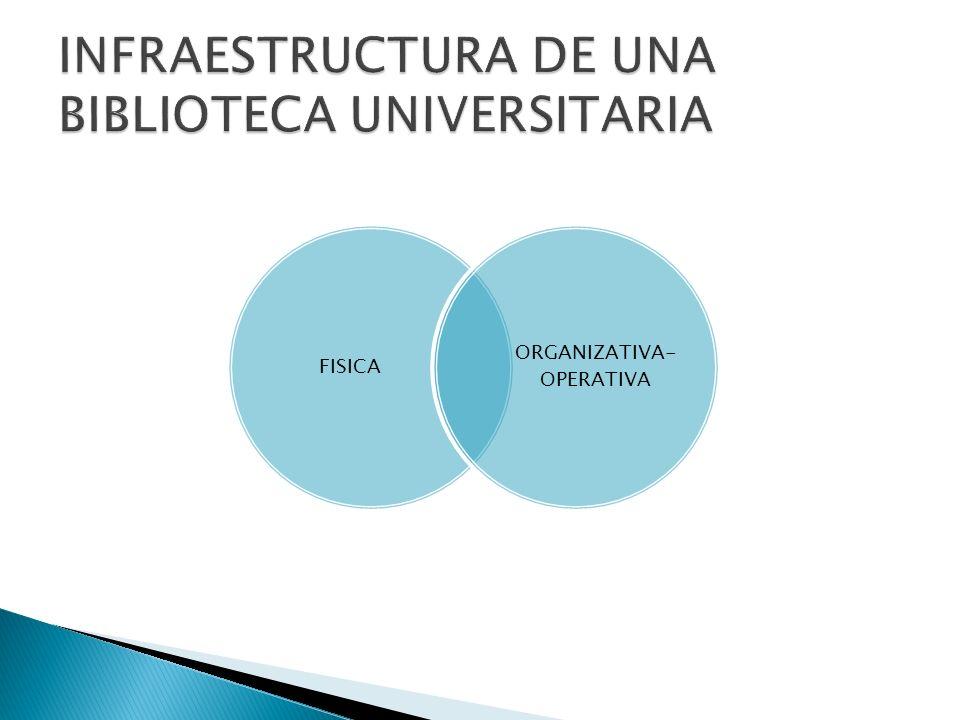 FISICA ORGANIZATIVA- OPERATIVA