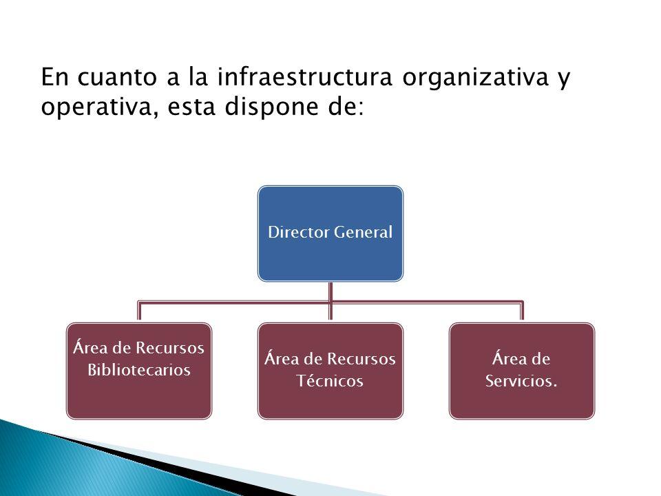 Director General Área de Recursos Bibliotecarios Área de Recursos Técnicos Área de Servicios. En cuanto a la infraestructura organizativa y operativa,