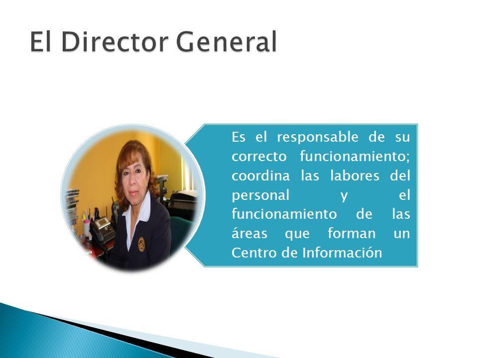 Es el responsable de su correcto funcionamiento; coordina las labores del personal y el funcionamiento de las áreas que forman un Centro de Informació