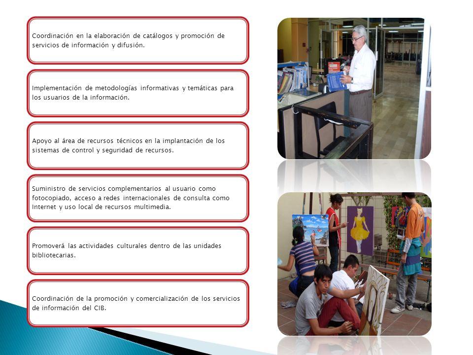 Coordinación en la elaboración de catálogos y promoción de servicios de información y difusión. Implementación de metodologías informativas y temática