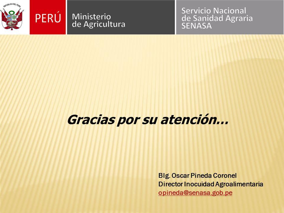 Gracias por su atención… Blg. Oscar Pineda Coronel Director Inocuidad Agroalimentaria opineda@senasa.gob.pe