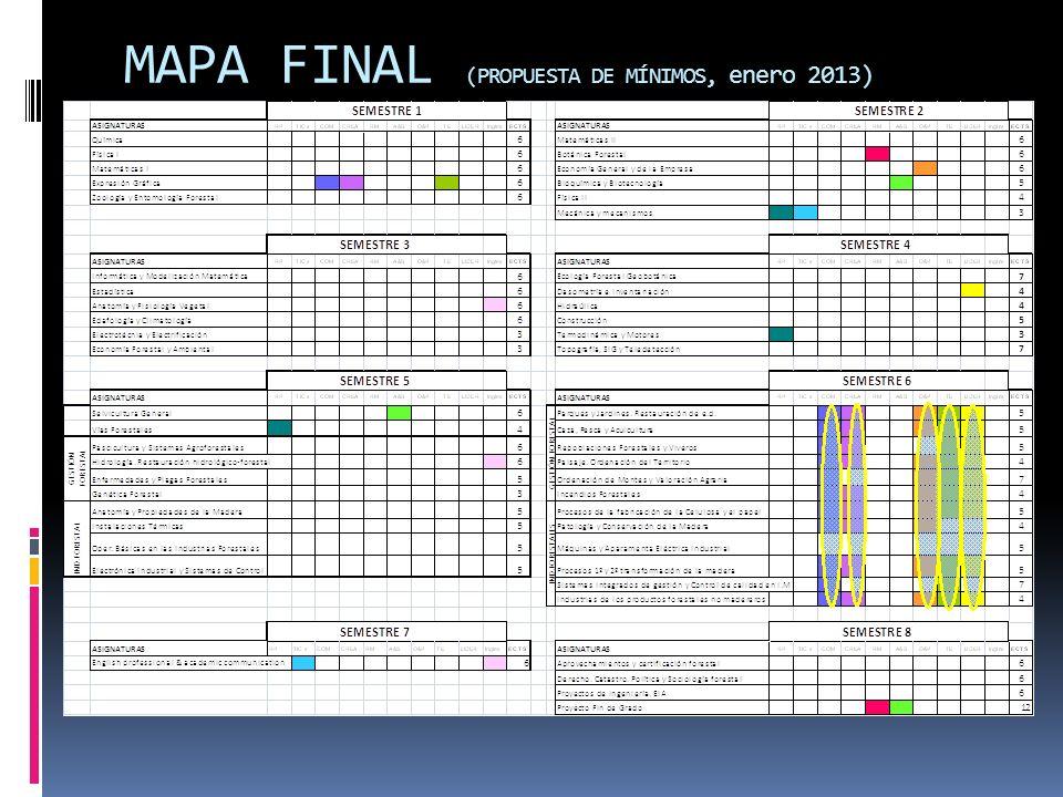 MAPA FINAL (PROPUESTA DE MÍNIMOS, enero 2013)