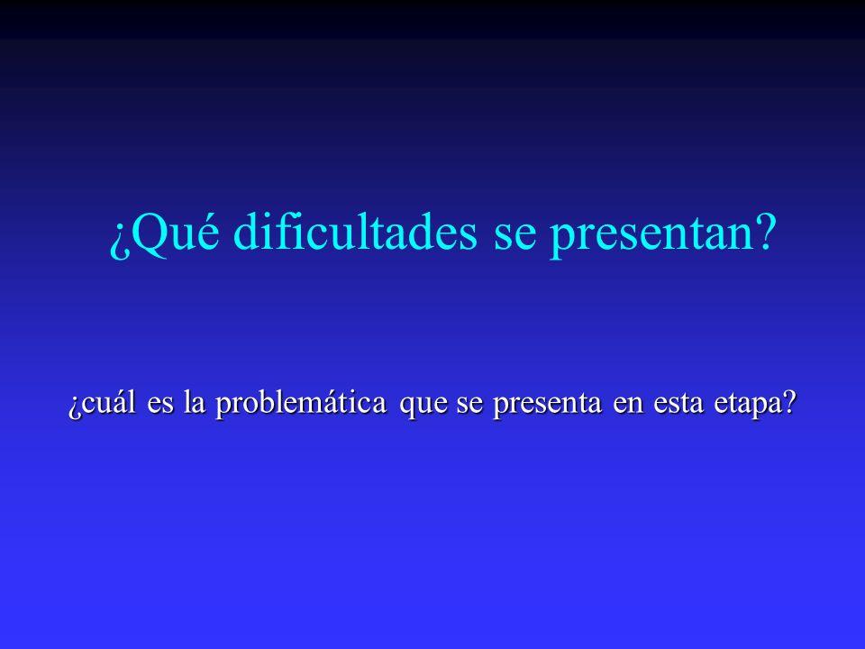 ¿Qué dificultades se presentan? ¿cuál es la problemática que se presenta en esta etapa?