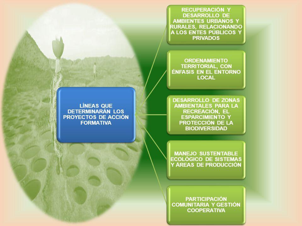 LÍNEAS QUE DETERMINARÁN LOS PROYECTOS DE ACCIÓN FORMATIVA RECUPERACIÓN Y DESARROLLO DE AMBIENTES URBANOS Y RURALES, RELACIONANDO A LOS ENTES PÚBLICOS
