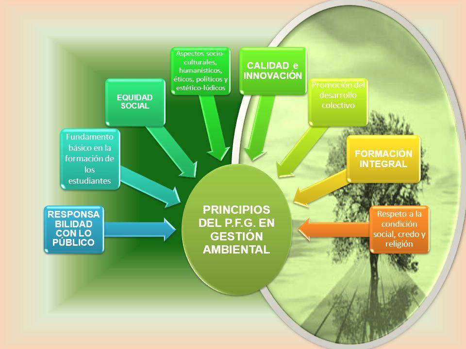 PRINCIPIOS DEL P.F.G. EN GESTIÓN AMBIENTAL RESPONSA BILIDAD CON LO PÚBLICO Fundamento básico en la formación de los estudiantes EQUIDAD SOCIAL Aspecto