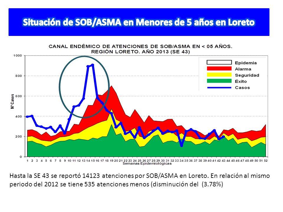 Hasta la SE 43 se reportó 14123 atenciones por SOB/ASMA en Loreto. En relación al mismo periodo del 2012 se tiene 535 atenciones menos (disminución de