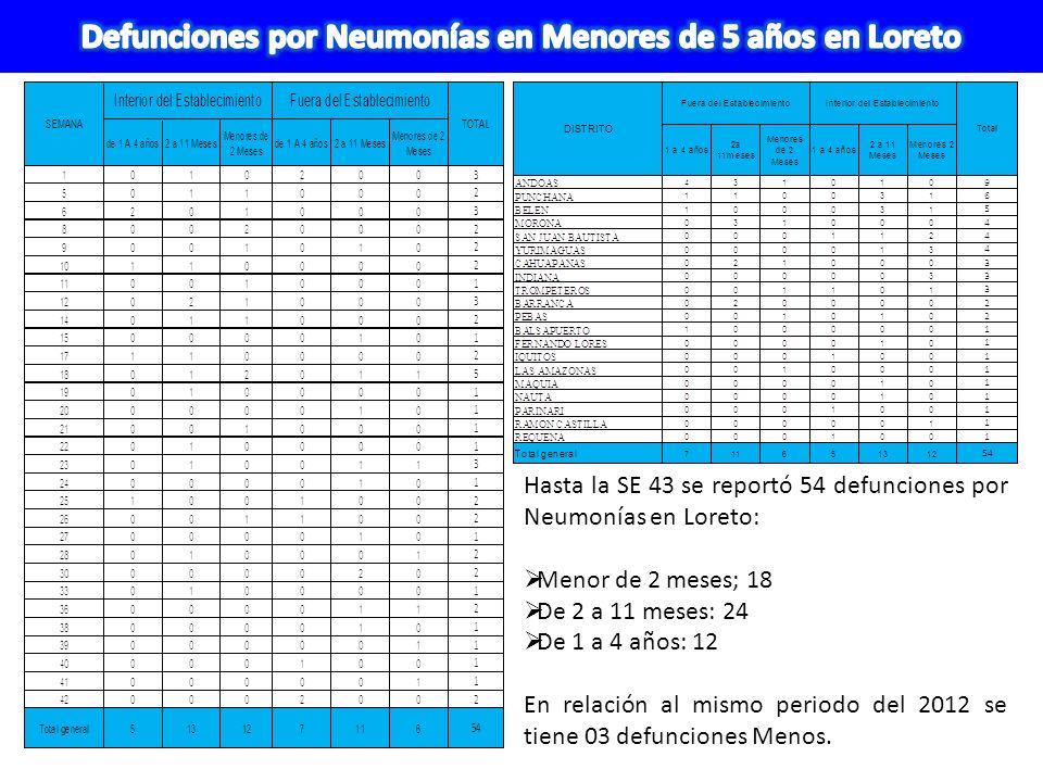 Hasta la SE 43 se reportó 54 defunciones por Neumonías en Loreto: Menor de 2 meses; 18 De 2 a 11 meses: 24 De 1 a 4 años: 12 En relación al mismo peri