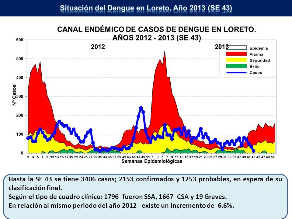 Fuente: Dirección de Epidemiología – DIRESA Loreto Hasta la SE 43 se tiene 36813 casos confirmados; 30469 son vivax, 6337 falcíparum y 01 malariae y 06 malaria mixta.