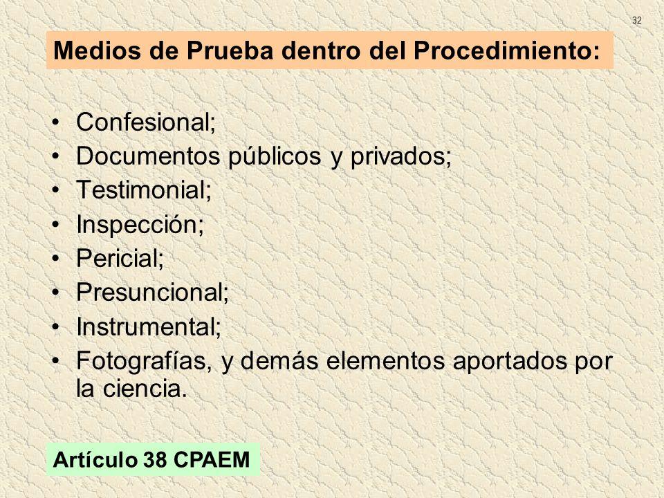 Confesional; Documentos públicos y privados; Testimonial; Inspección; Pericial; Presuncional; Instrumental; Fotografías, y demás elementos aportados p
