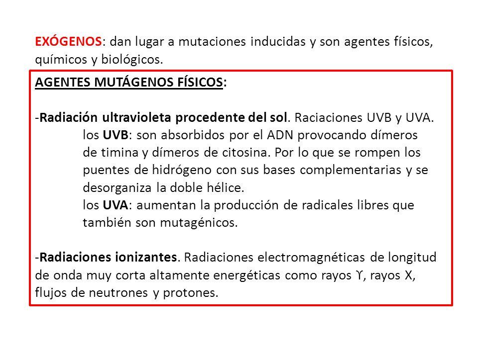 -Radiación corpuscular.