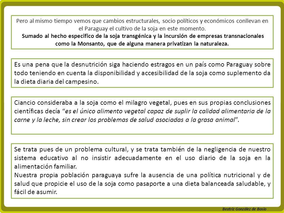Beatriz González de Bosio Pero al mismo tiempo vemos que cambios estructurales, socio políticos y económicos conllevan en el Paraguay el cultivo de la