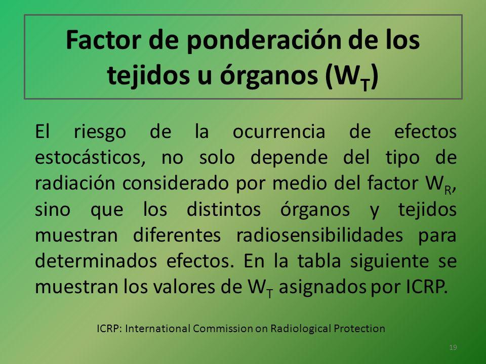Factor de ponderación de los tejidos u órganos (W T ) El riesgo de la ocurrencia de efectos estocásticos, no solo depende del tipo de radiación consid