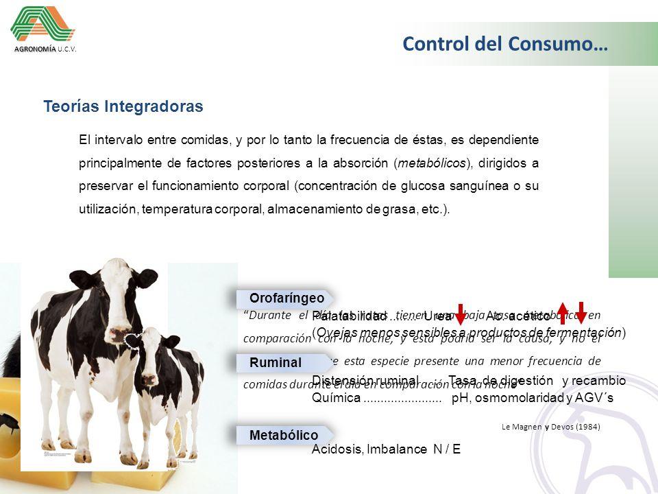 UNIVERSIDAD CENTRAL DE VENEZUELA Facultad de Agronomía Departamento de Producción Animal Cátedra de Recursos para la Alimentación Animal Campus Maracay Dr.