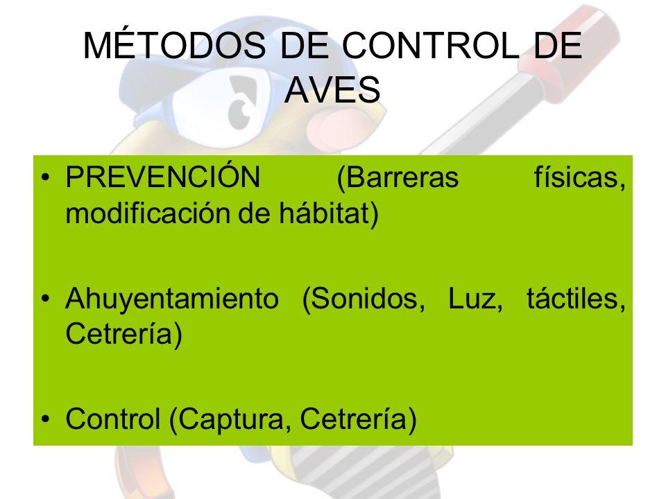 MÉTODOS DE CONTROL DE AVES PREVENCIÓN (Barreras físicas, modificación de hábitat) Ahuyentamiento (Sonidos, Luz, táctiles, Cetrería) Control (Captura,