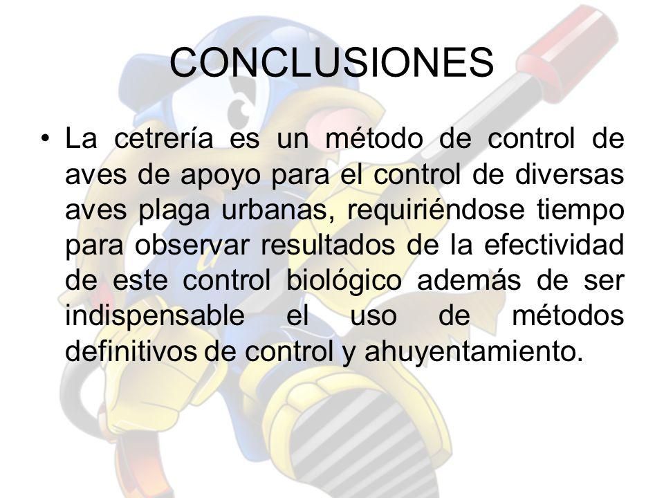 CONCLUSIONES La cetrería es un método de control de aves de apoyo para el control de diversas aves plaga urbanas, requiriéndose tiempo para observar r