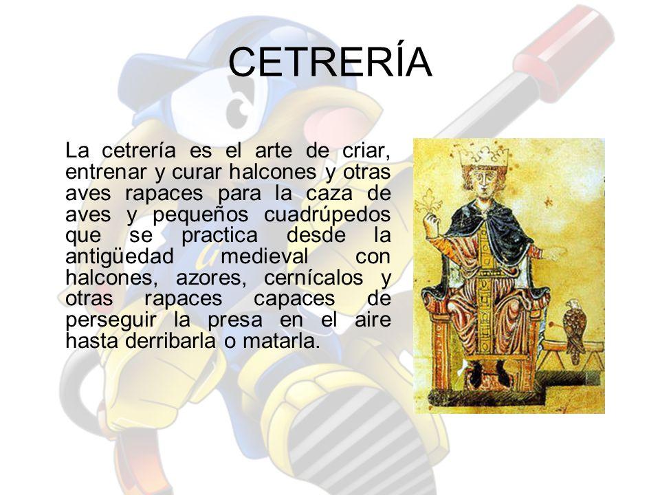 ANTECEDENTES Los antiguos vestigios y documentos sobre cetrería muestran que en la mayoría de los casos se trataba de un deporte aristocrático en el que participaban reyes y otros personajes poderosos.